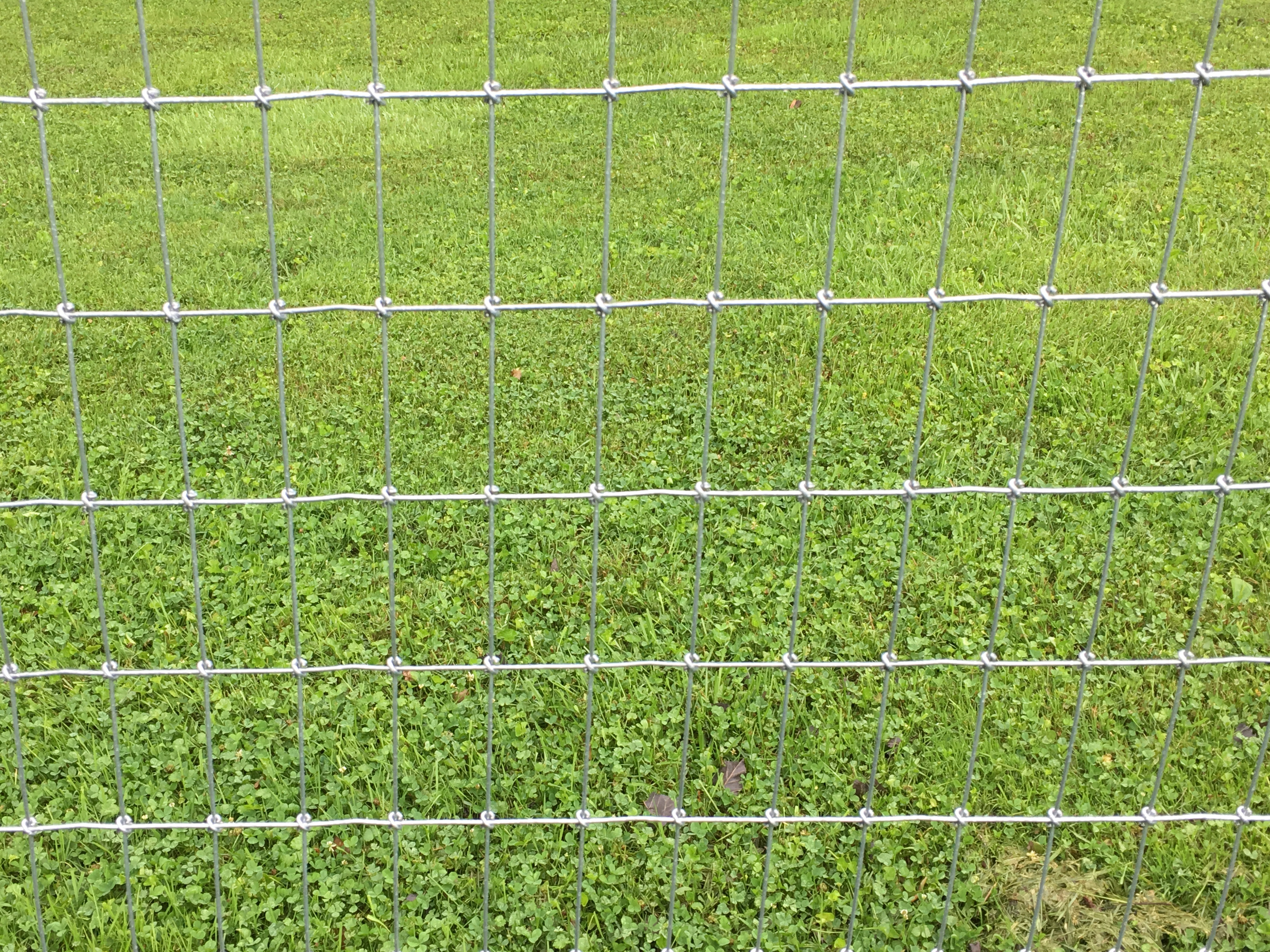 Woven Wire Fence - Petty Farms